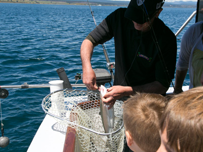 taupo fishing guide